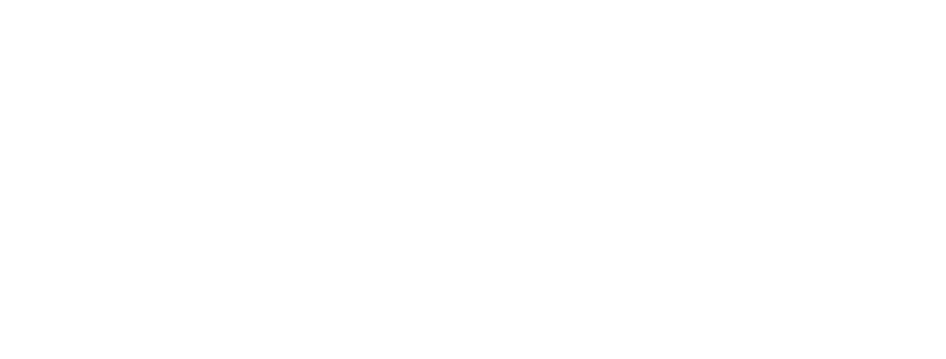 SHANNON ADELSON
